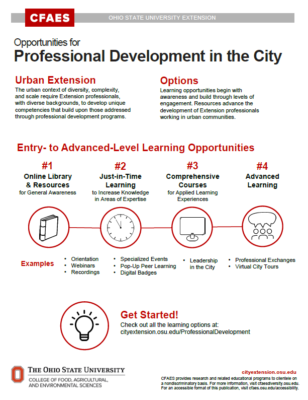 Professional Development Infographic